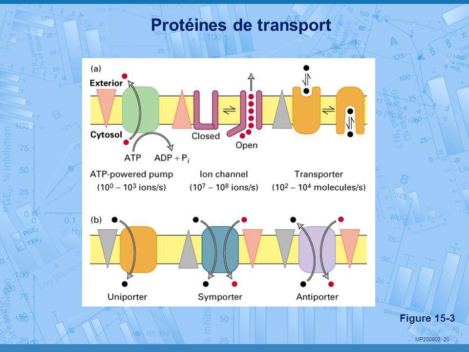 MP200802 20 Protéines de transport Figure 15-3