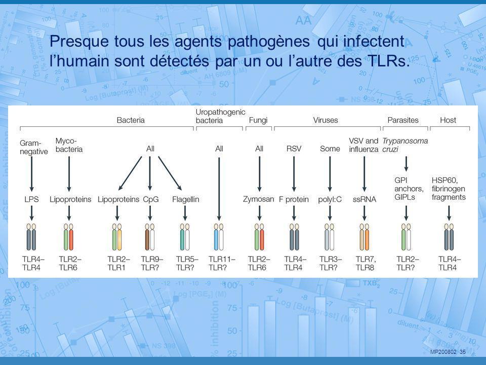 MP200802 35 Presque tous les agents pathogènes qui infectent l'humain sont détectés par un ou l'autre des TLRs.