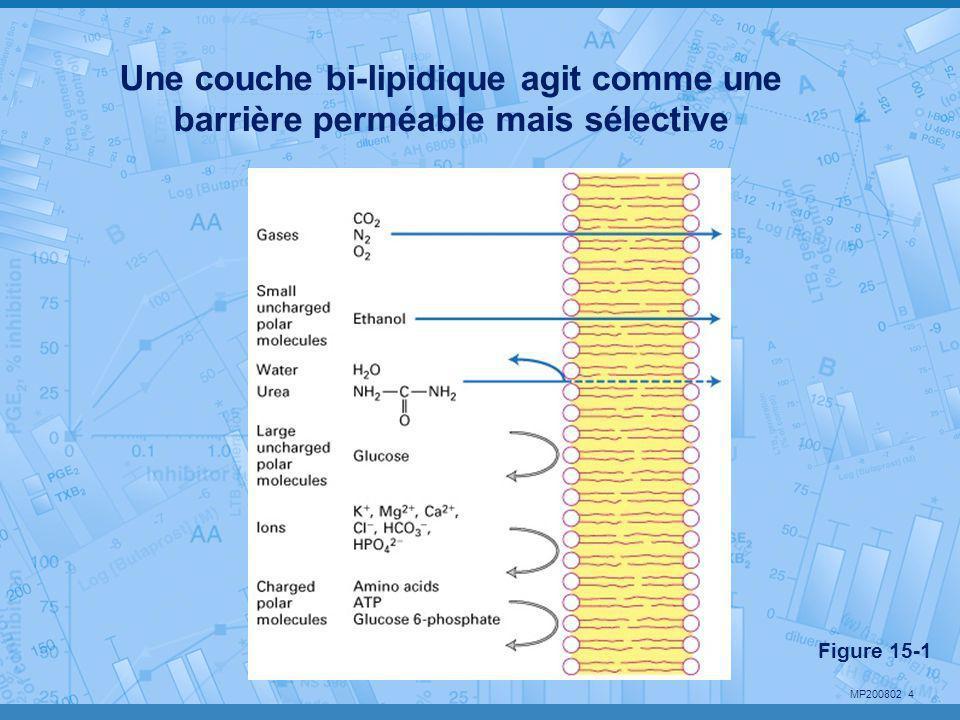MP200802 4 Une couche bi-lipidique agit comme une barrière perméable mais sélective Figure 15-1