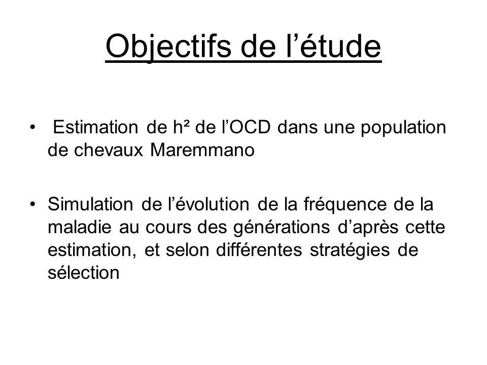 Objectifs de l'étude • Estimation de h² de l'OCD dans une population de chevaux Maremmano •Simulation de l'évolution de la fréquence de la maladie au cours des générations d'après cette estimation, et selon différentes stratégies de sélection