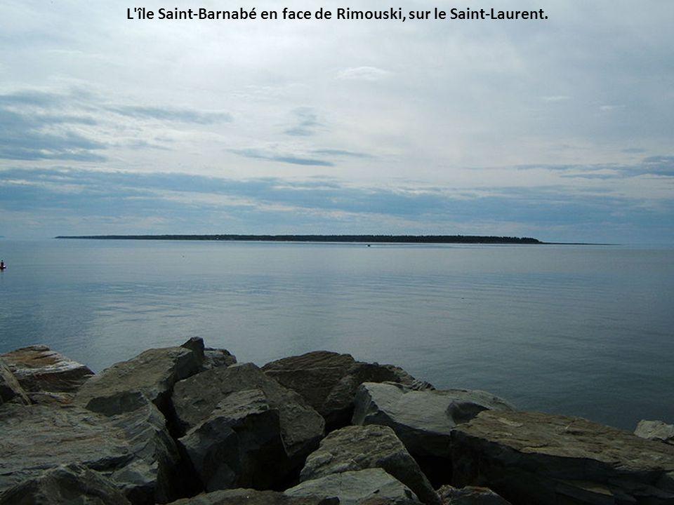 Photo prise à Île aux Basques, depuis l'Anse d'en BasÎle aux Basques