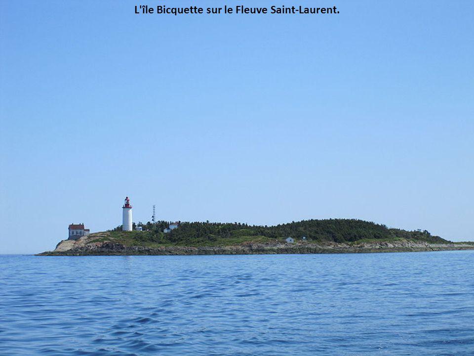 L'île Saint-Barnabé en face de Rimouski, sur le Saint-Laurent.