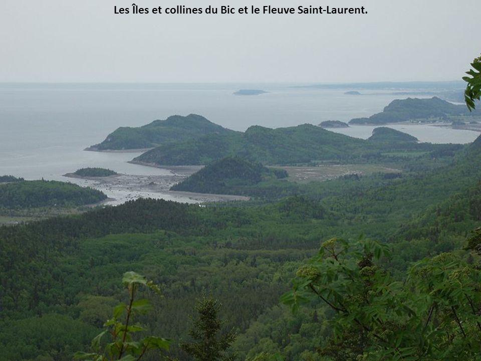 L'île Bicquette sur le Fleuve Saint-Laurent.