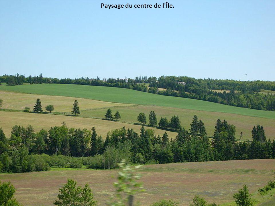 Île-du-Prince-Édouard L'Île est reconnue pour son sol rouge.