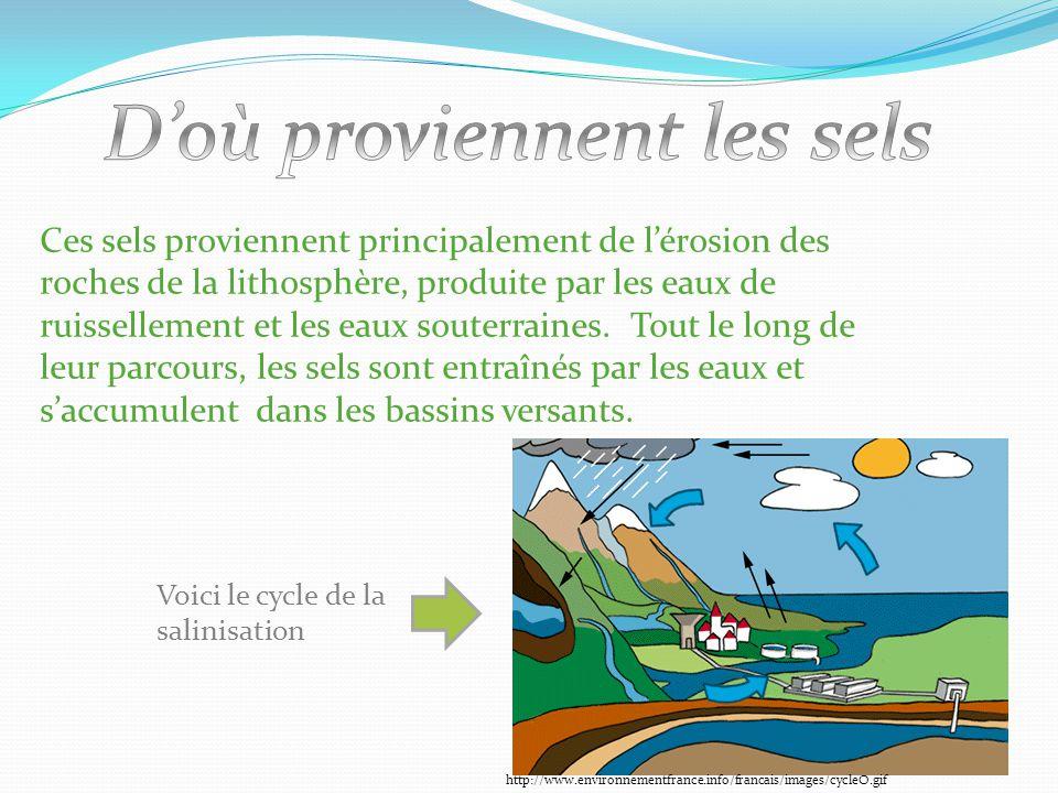 Ces sels proviennent principalement de l'érosion des roches de la lithosphère, produite par les eaux de ruissellement et les eaux souterraines. Tout l