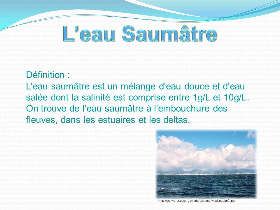 Définition : L'eau saumâtre est un mélange d'eau douce et d'eau salée dont la salinité est comprise entre 1g/L et 10g/L. On trouve de l'eau saumâtre à