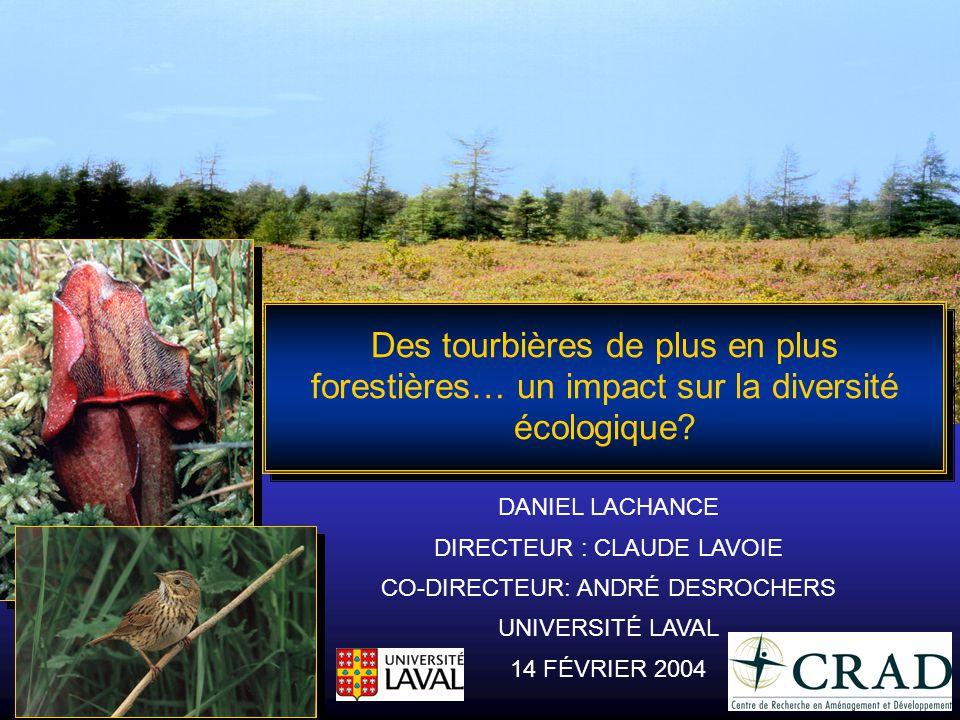 Des tourbières de plus en plus forestières… un impact sur la diversité écologique? DANIEL LACHANCE DIRECTEUR : CLAUDE LAVOIE CO-DIRECTEUR: ANDRÉ DESRO