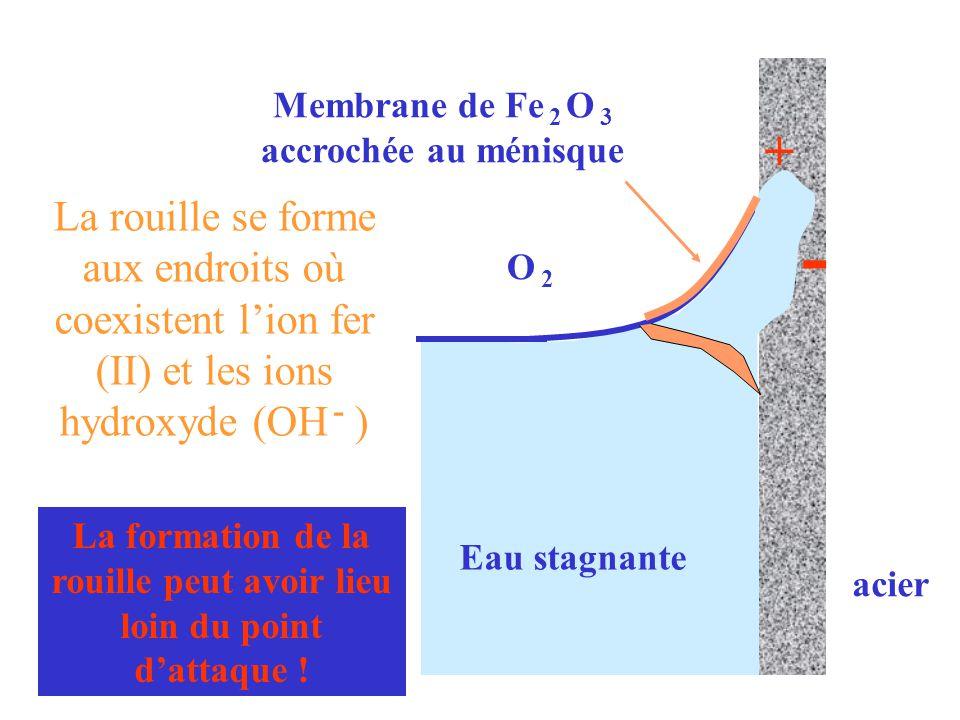 Membrane de Fe 2 O 3 accrochée au ménisque La formation de la rouille peut avoir lieu loin du point d'attaque ! Eau stagnante acier O 2O 2 + - La roui
