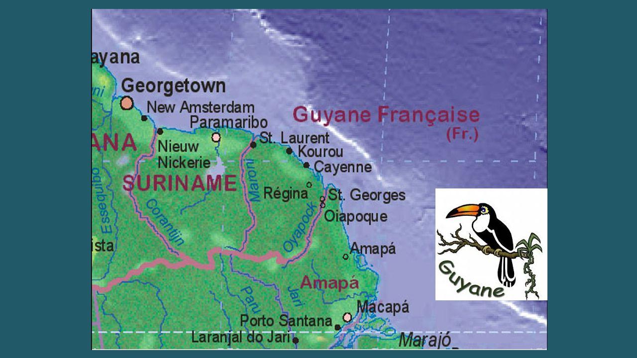 Accueil dans ce département d'Outre-mer Français
