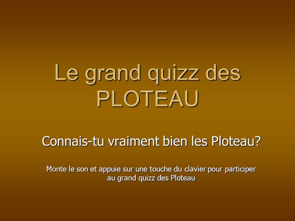 Le grand quizz des PLOTEAU Connais-tu vraiment bien les Ploteau.