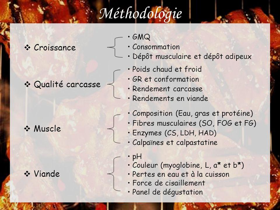 Méthodologie  Croissance • GMQ • Consommation • Dépôt musculaire et dépôt adipeux  Qualité carcasse • Poids chaud et froid • GR et conformation • Re