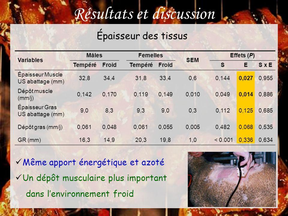 Résultats et discussion Variables Mâles Femelles SEM Effets (P) TempéréFroid TempéréFroid SES x E Épaisseur Muscle US abattage (mm) 32,834,431,833,40,