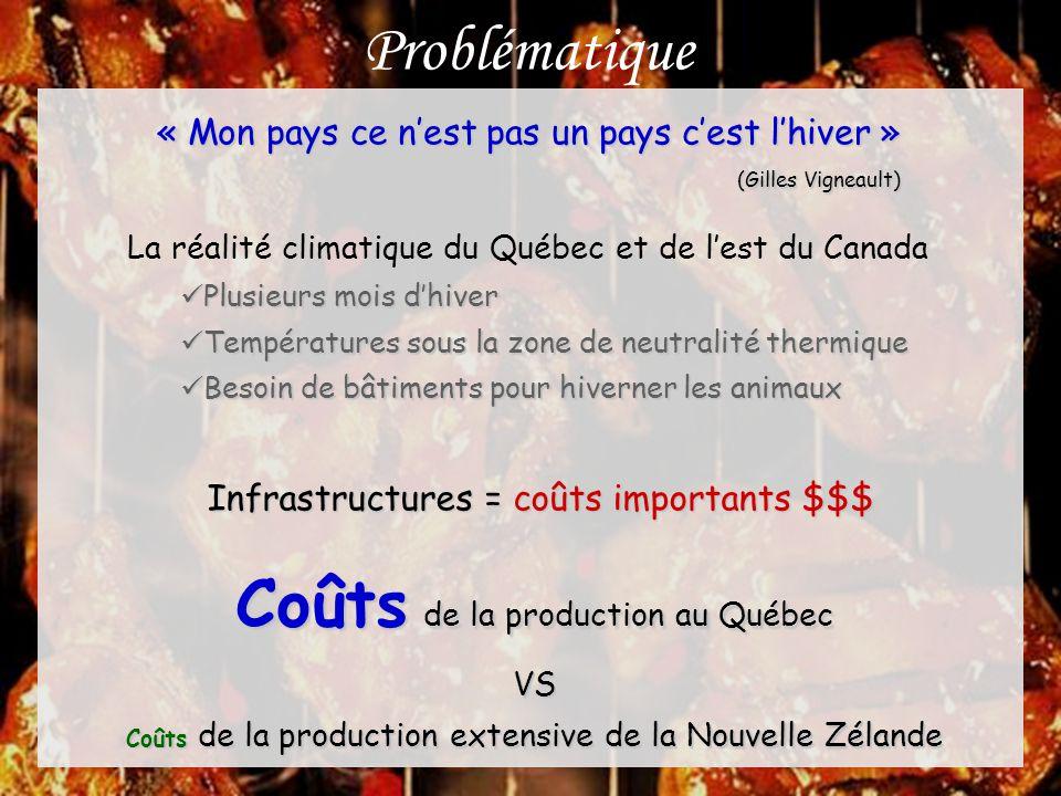 Problématique Les producteurs ovins la marge de profit « mince » Bâtiments non isolés vs isolés = 42,32 $ m -2 (Groupe Geagri, 1998) Bergerie non isolée