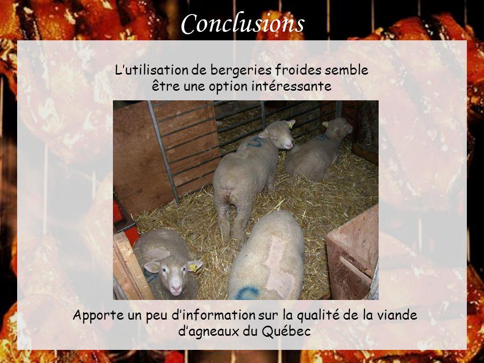Conclusions L'utilisation de bergeries froides semble être une option intéressante Apporte un peu d'information sur la qualité de la viande d'agneaux