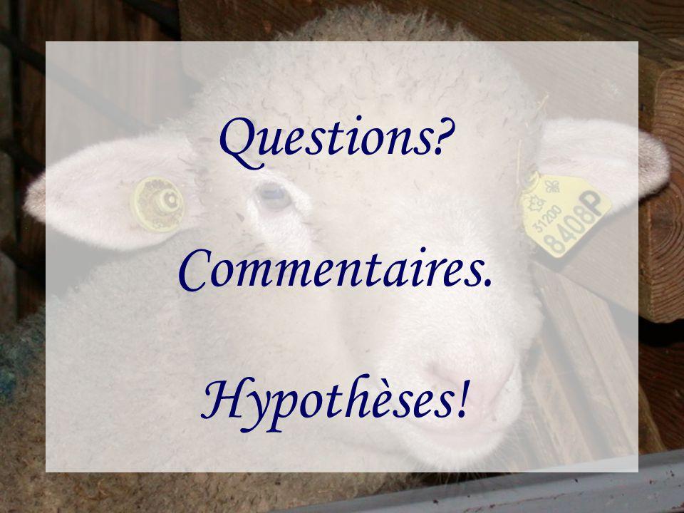 Questions? Commentaires. Hypothèses!