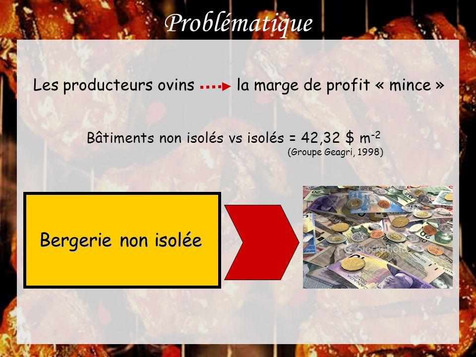 Problématique Les producteurs ovins la marge de profit « mince » Bâtiments non isolés vs isolés = 42,32 $ m -2 (Groupe Geagri, 1998) Bergerie non isol