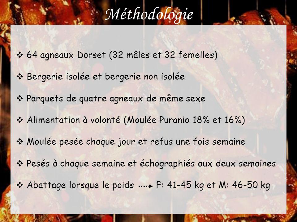 Résultats et discussion Qualité de la viande Pas de différence : • pH; • Couleur (myoglobine, L, a* et b*); • Force de cisaillement; • Perte en eau; • Perte à la cuisson.