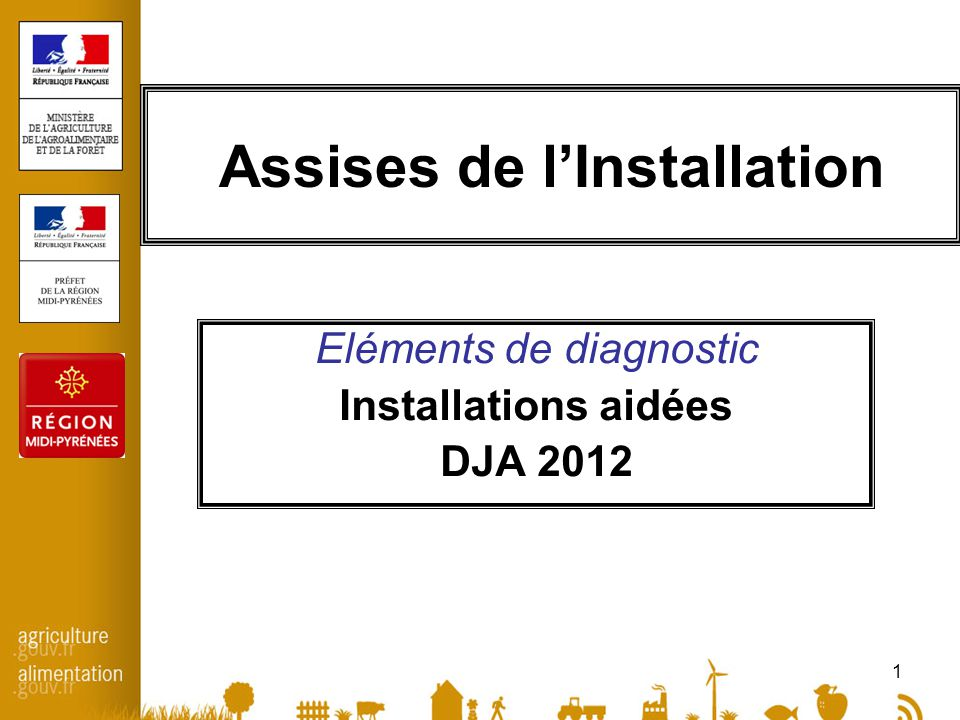 1 Assises de l'Installation Eléments de diagnostic Installations aidées DJA 2012