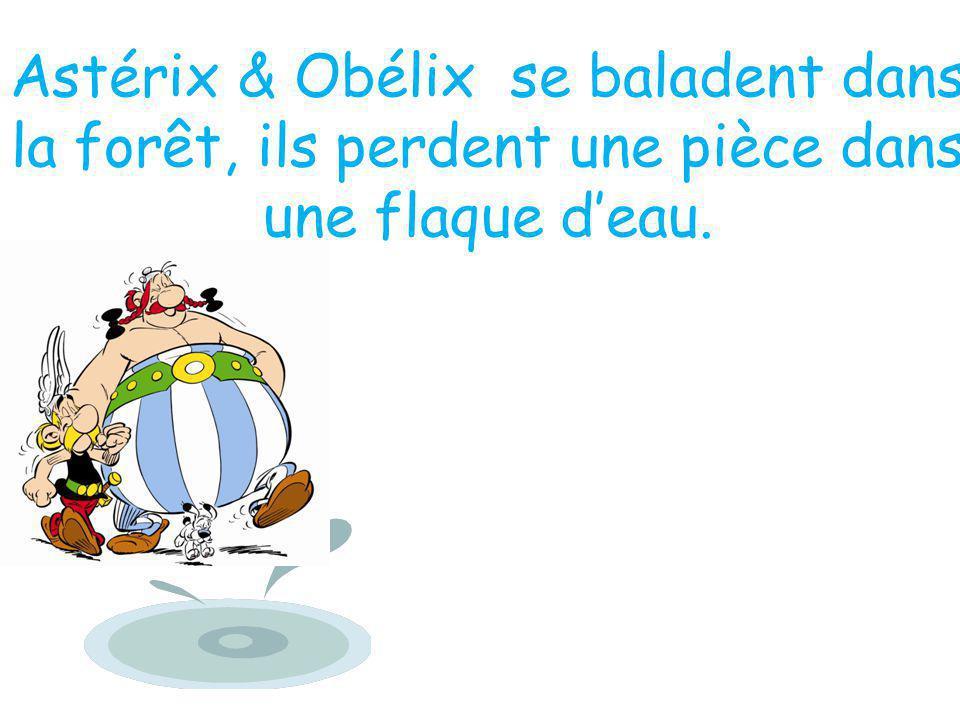 Astérix & Obélix se baladent dans la forêt, ils perdent une pièce dans une flaque d'eau.