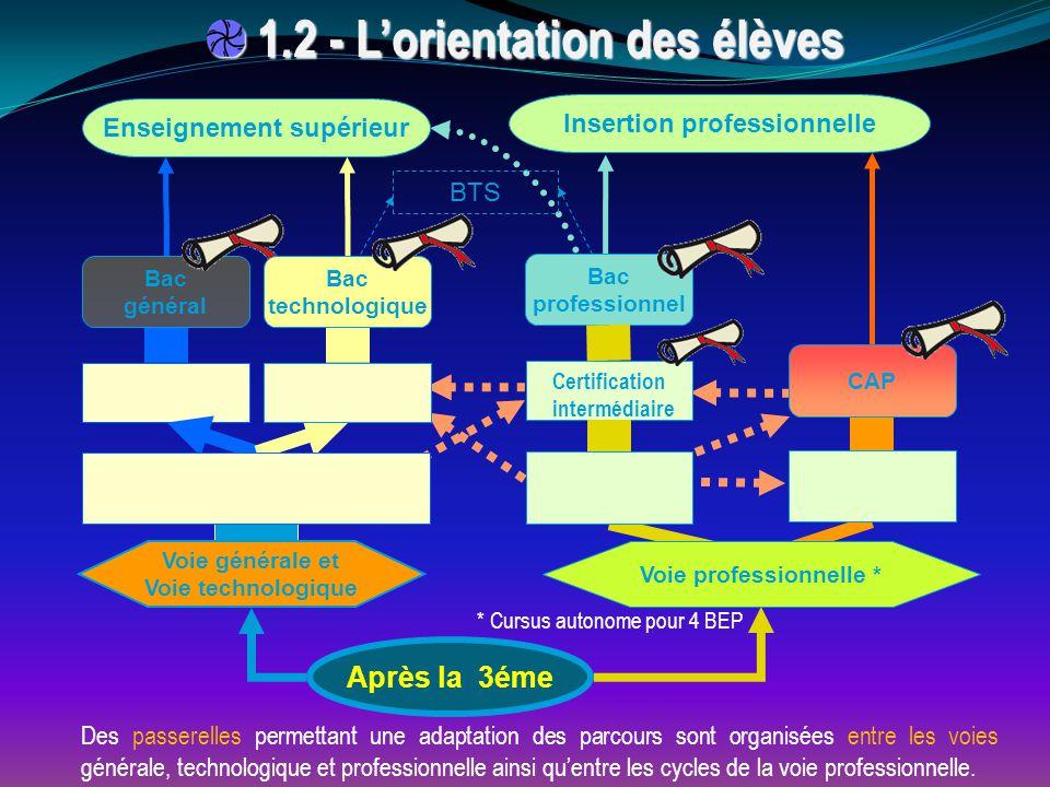 * Cursus autonome pour 4 BEP Des passerelles permettant une adaptation des parcours sont organisées entre les voies générale, technologique et professionnelle ainsi qu'entre les cycles de la voie professionnelle.