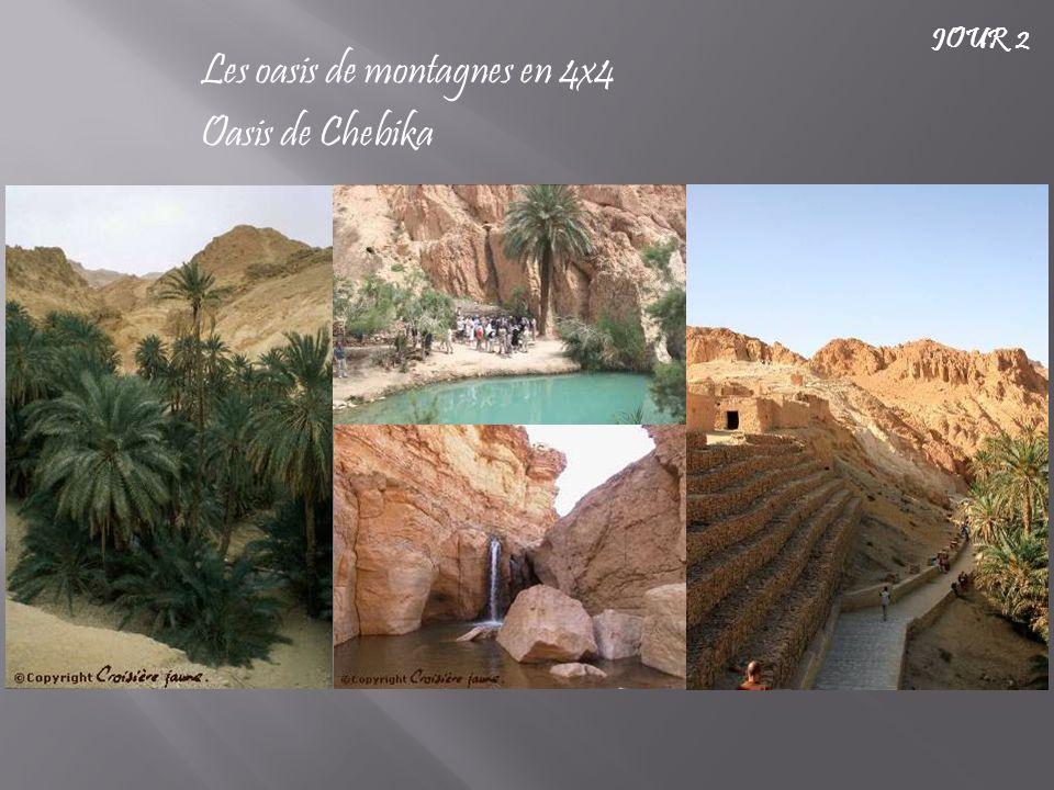 Les oasis de montagnes en 4x4 Oasis de Chebika JOUR 2