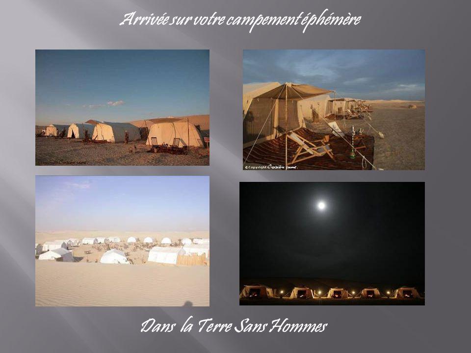 Arrivée sur votre campement éphémère Dans la Terre Sans Hommes