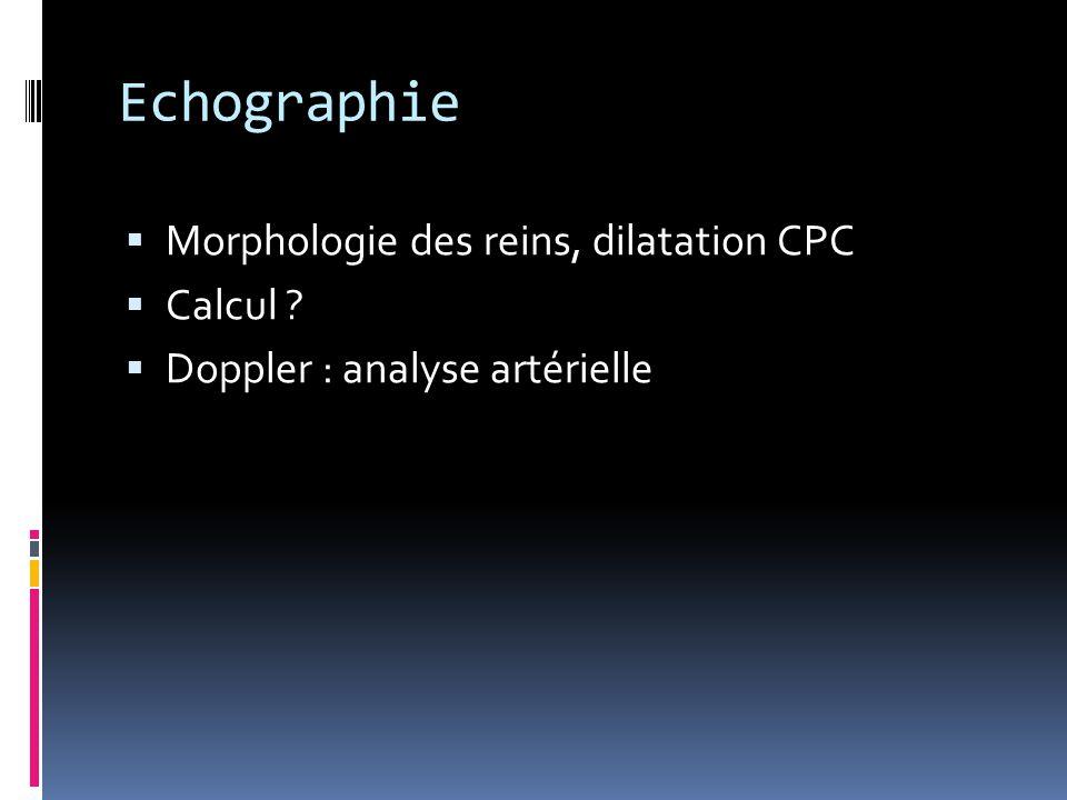 Echographie  Morphologie des reins, dilatation CPC  Calcul ?  Doppler : analyse artérielle
