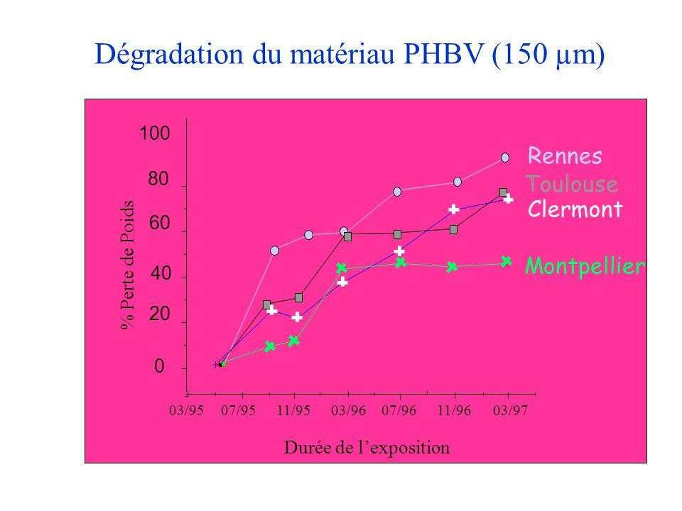 Dégradation du matériau PHBV (150 µm) 0 20 40 60 80 100 % Perte de Poids 03/9507/9511/9503/9607/9611/9603/97 Durée de l'exposition Montpellier Toulous