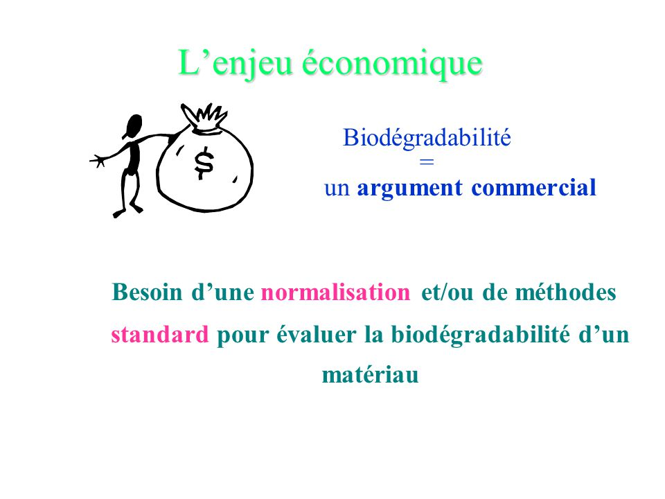 L'enjeu économique Biodégradabilité = un argument commercial Besoin d'une normalisation et/ou de méthodes standard pour évaluer la biodégradabilité d'