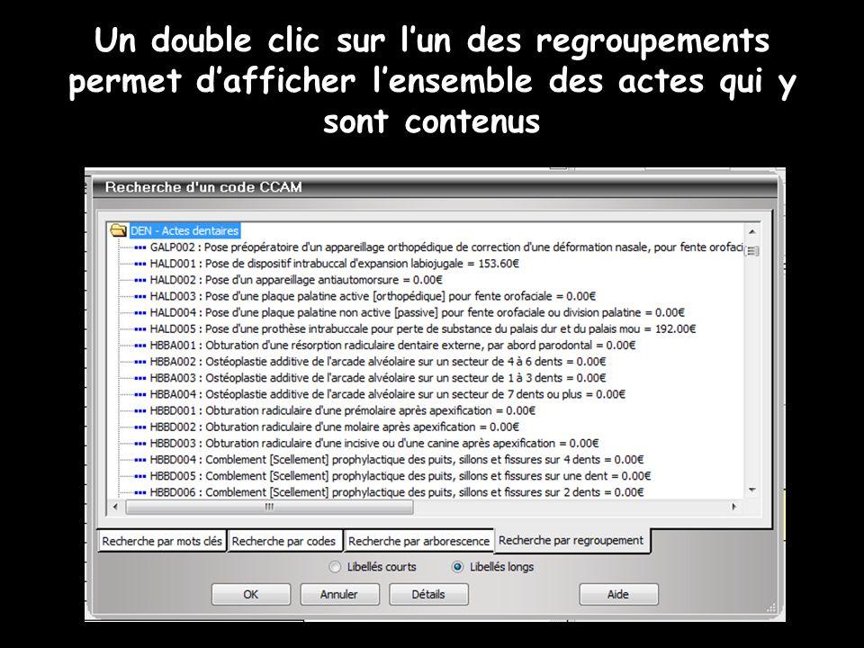 Un double clic sur l'un des regroupements permet d'afficher l'ensemble des actes qui y sont contenus