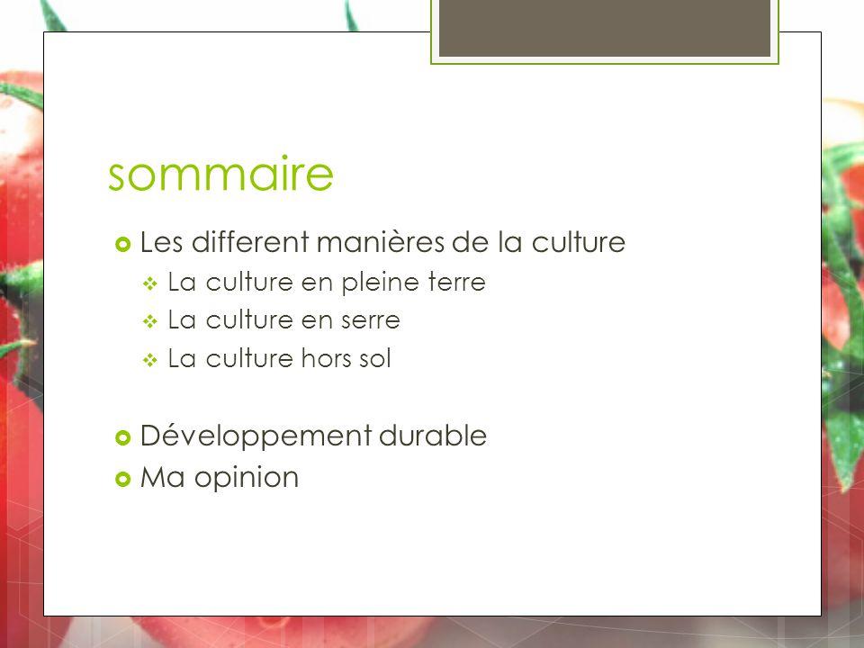 sommaire  Les different manières de la culture  La culture en pleine terre  La culture en serre  La culture hors sol  Développement durable  Ma opinion