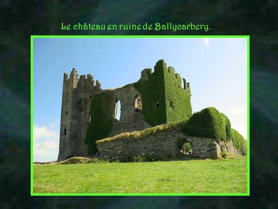 le comté de Donegal Le rôle premier de cette musique, où le son de la cornemuse domine, est de vous faire rêver tout en admirant les plus hautes falai