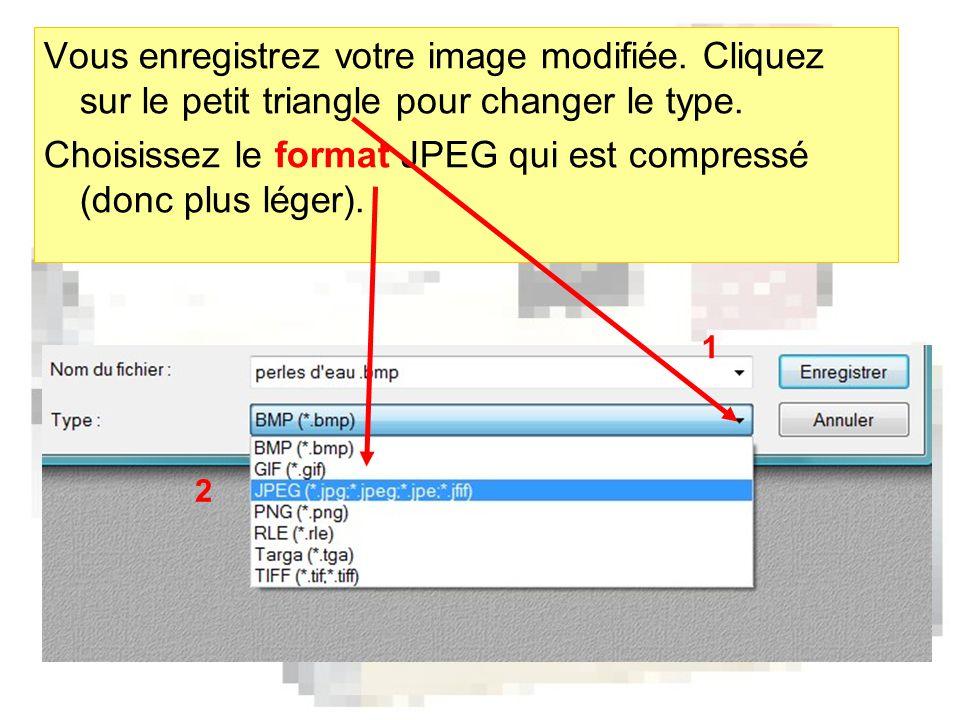 Vous enregistrez votre image modifiée. Cliquez sur le petit triangle pour changer le type.