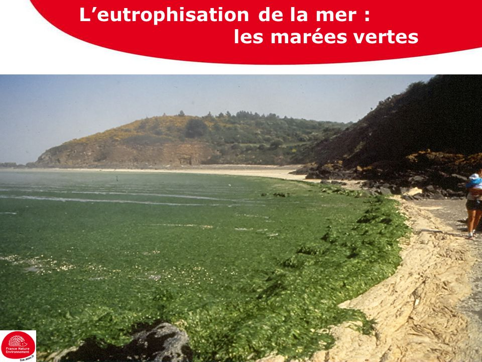 Les pollutions diffuses les pesticides….