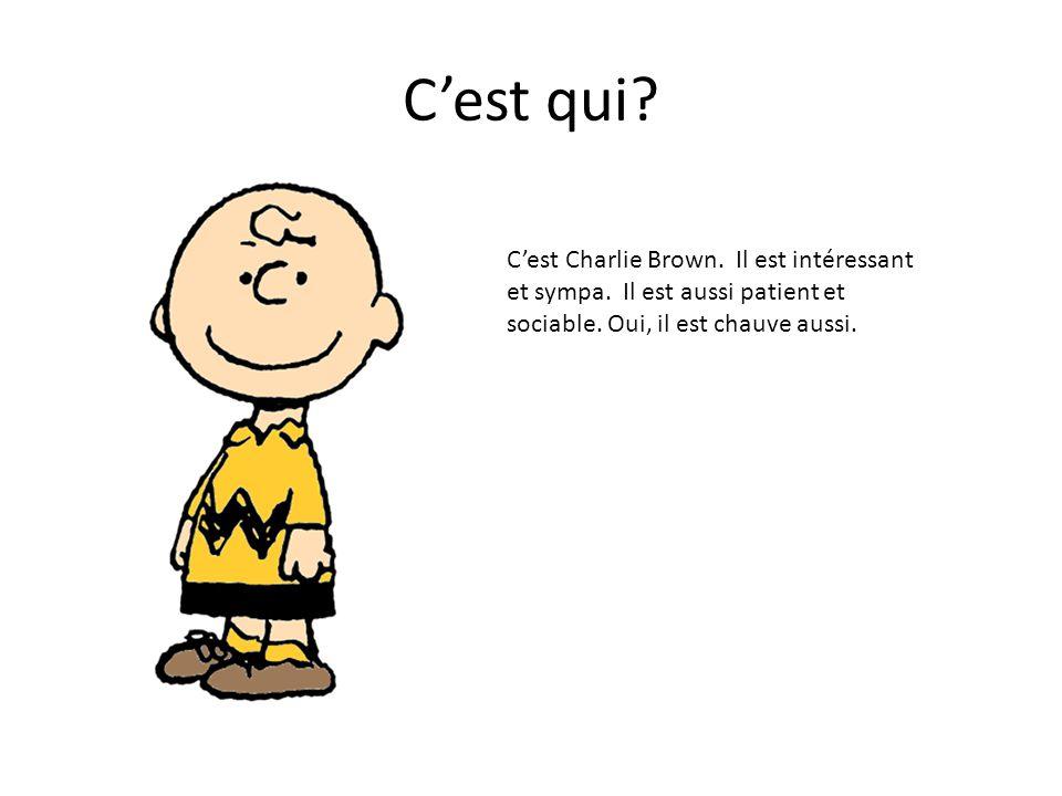 C'est qui? C'est Charlie Brown. Il est intéressant et sympa. Il est aussi patient et sociable. Oui, il est chauve aussi.