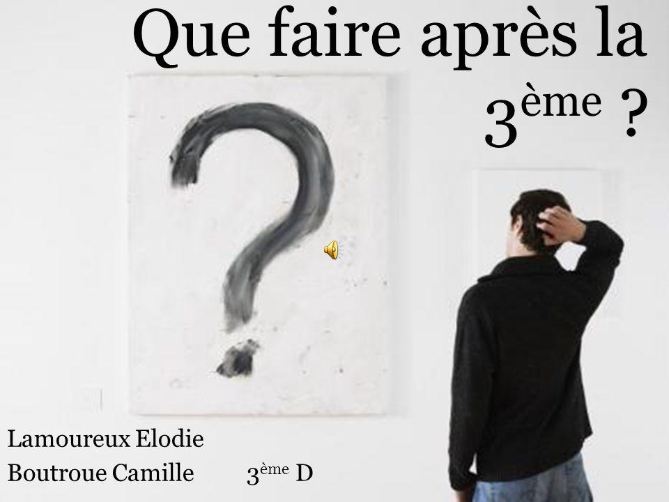 Que faire après la 3 ème ? Lamoureux Elodie Boutroue Camille 3 ème D