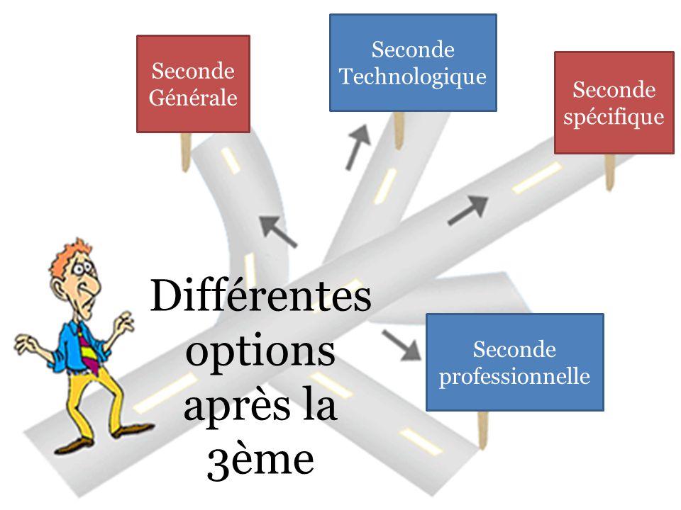 Différentes options après la 3ème Seconde Générale Seconde Technologique Seconde spécifique Seconde professionnelle