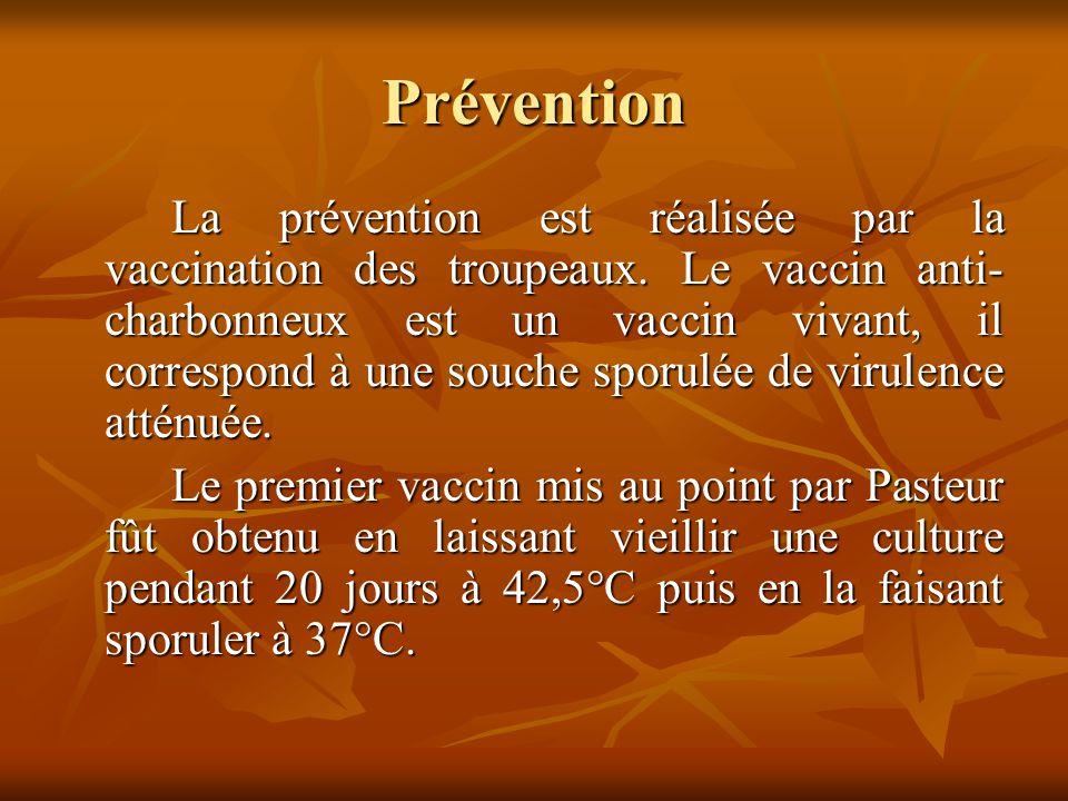 Prévention La prévention est réalisée par la vaccination des troupeaux.