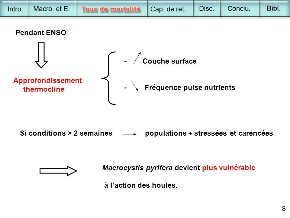 8 Pendant ENSO Approfondissement thermocline - Couche surface - Fréquence pulse nutrients Si conditions > 2 semaines populations + stressées et carenc