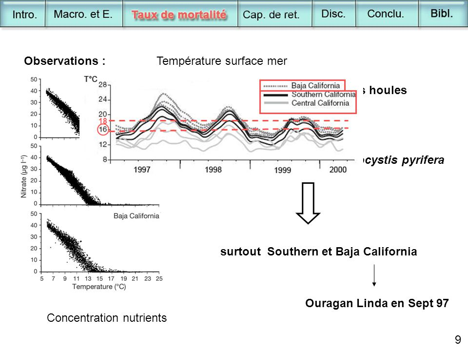 9 Concentration nutrients Observations :Température surface mer Mortalité populations Macrocystis pyrifera surtout Southern et Baja California Ouragan Linda en Sept 97 + intensification action des houles 18 9