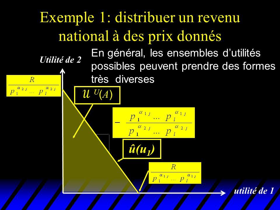 Exemple 2: distribuer des quantités données de l biens entre n individus  L'individu i consomme le bien j dans la quantité x ij.