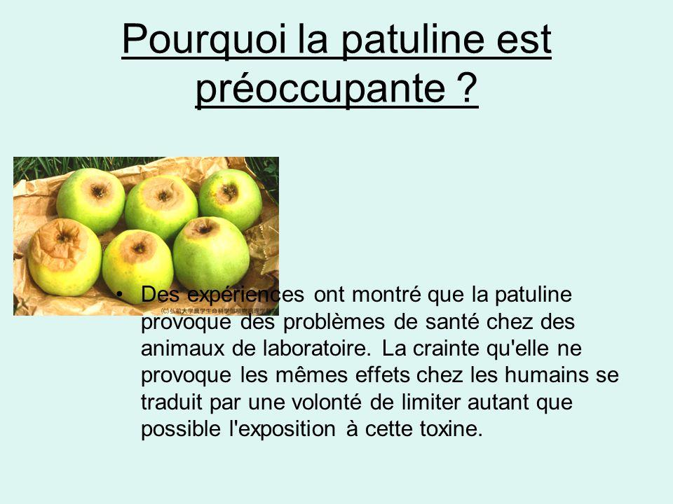 Pourquoi la patuline est préoccupante ? •Des expériences ont montré que la patuline provoque des problèmes de santé chez des animaux de laboratoire. L