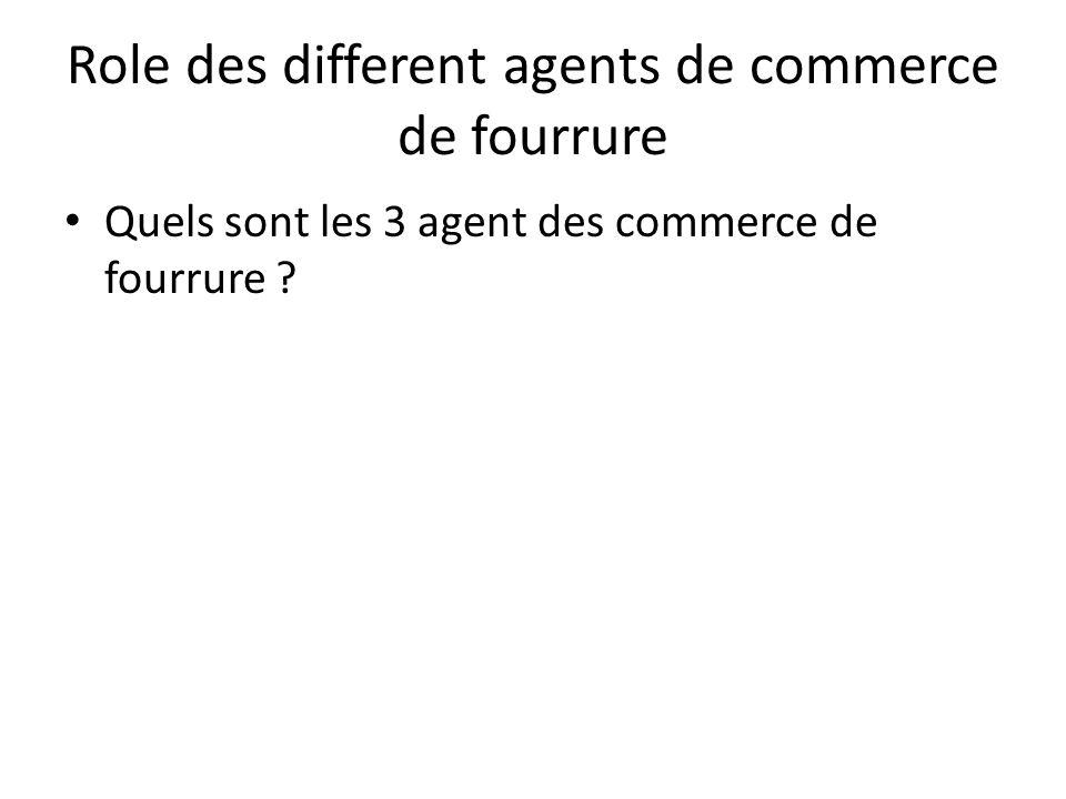 Role des different agents de commerce de fourrure • Quels sont les 3 agent des commerce de fourrure ?