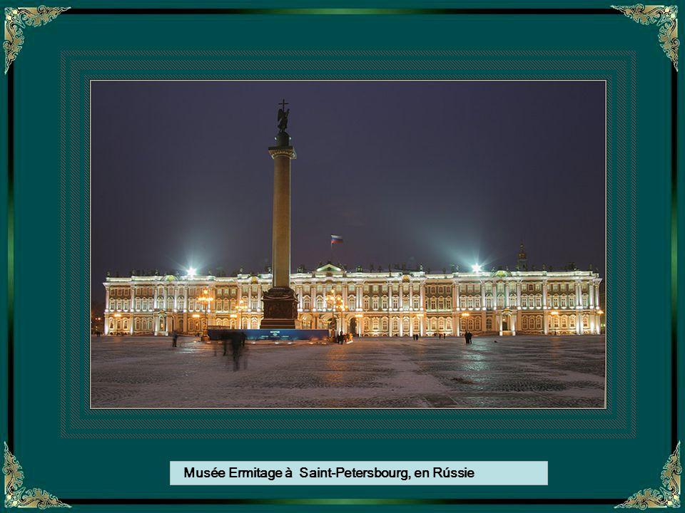 Musée Ermitage à Saint-Petersbourg, en Rússie