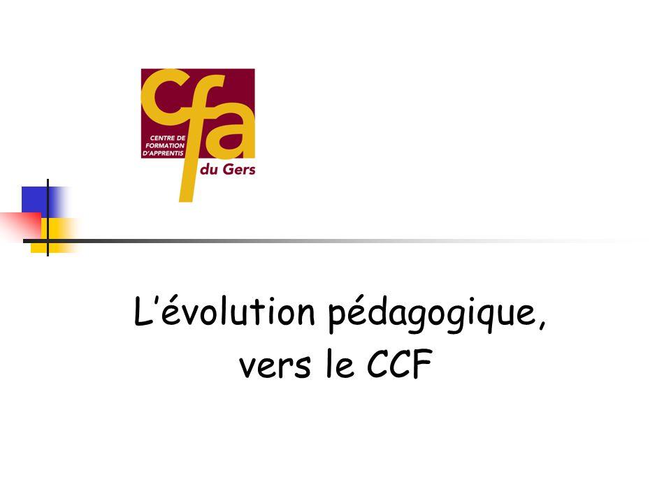  Allemagne - charpente séjour en septembre 2005 / 3 semaines à Bonn avec la CRM et le CFA de Tarbes  Canada - boulangerie en novembre 2005  Slovaqu