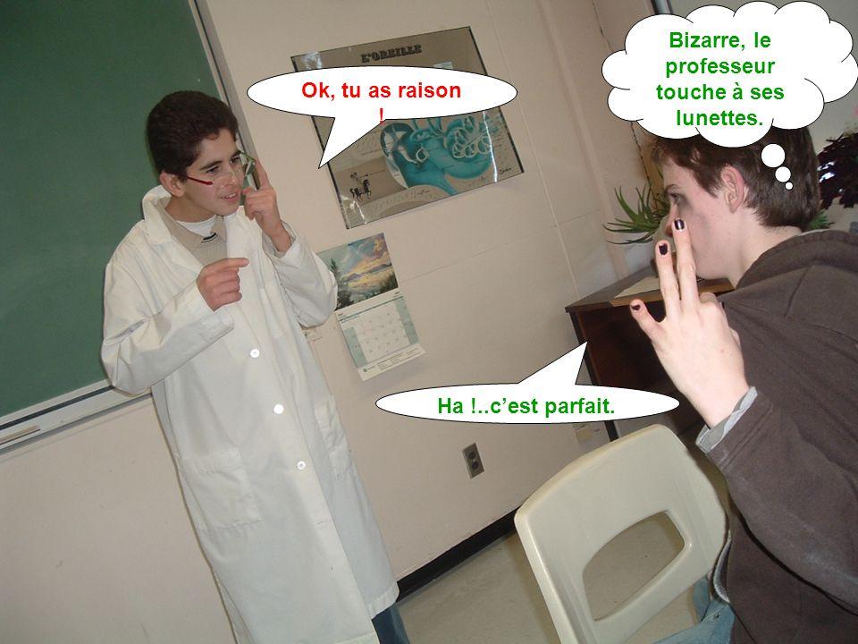 Ok, tu as raison ! Ha !..c'est parfait. Bizarre, le professeur touche à ses lunettes.