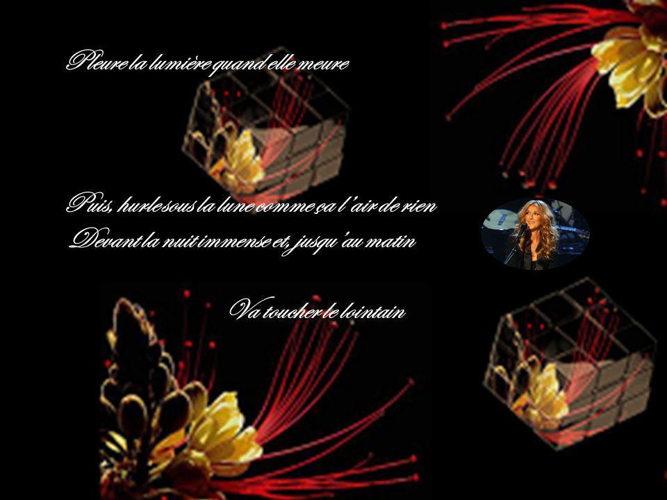 Le miracle est en nous Mon Amour. Jack.didier.diapos.over-blog.com