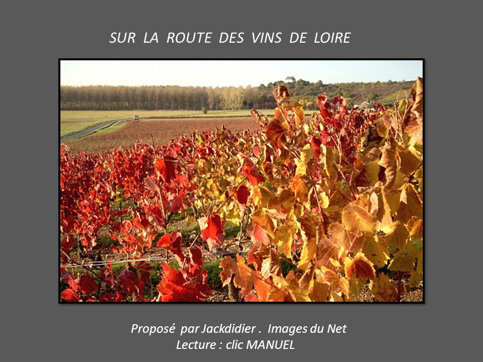 SUR LA ROUTE DES VINS DE LOIRE Proposé par Jackdidier. Images du Net Lecture : clic MANUEL