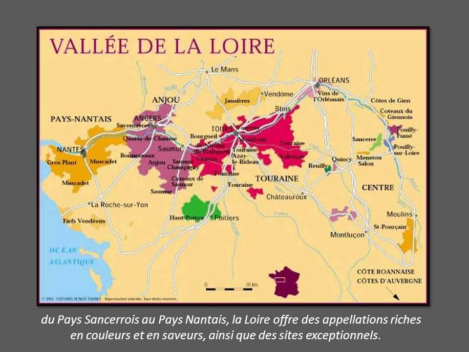 du Pays Sancerrois au Pays Nantais, la Loire offre des appellations riches en couleurs et en saveurs, ainsi que des sites exceptionnels.