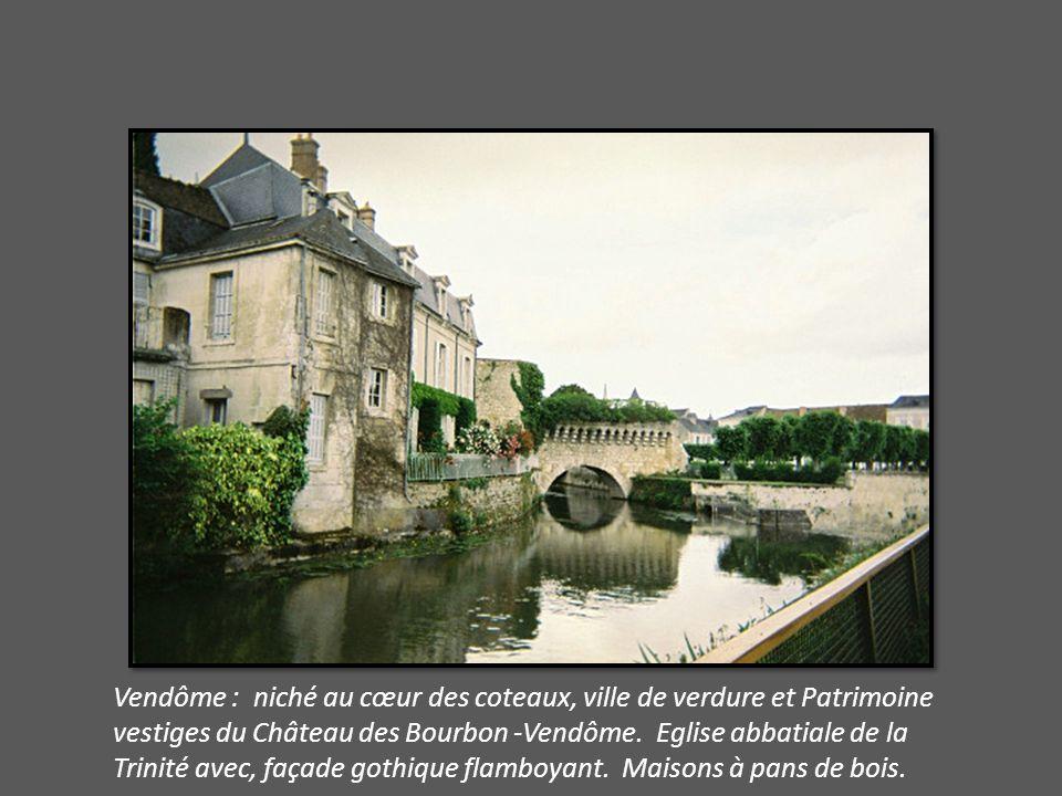 Vendôme : niché au cœur des coteaux, ville de verdure et Patrimoine vestiges du Château des Bourbon -Vendôme.